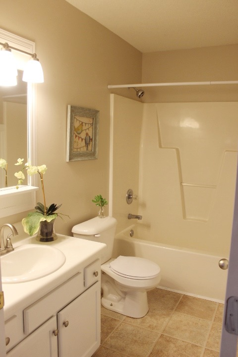 Cool Read The Rest Of Our Bath Reno 101 Series