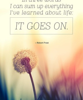 Life Goes on....