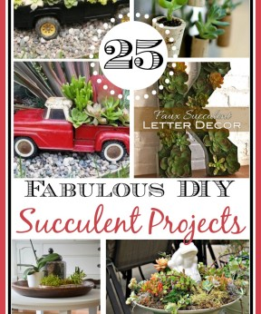 25 Ways to Use Succulents